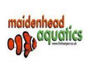 Maidenhead Aquatics hours